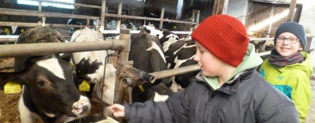 Žáci 1. a 3. třídy vyjeli na exkurzi do Ekologického centra vBrništi. Společně tady zjišťovali, co musí umět a vědět moderní zemědělec, aby dokázal pěstovat obilí a starat se o […]