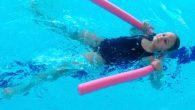 Se začátkem jara máme za sebou již polovinu plaveckého výcviku, děti jsou nadšené a všechny již plavou. Některé jako želvičky, kapříci, ti nejlepší jsou žraloci, ale všichni plaveme a to […]