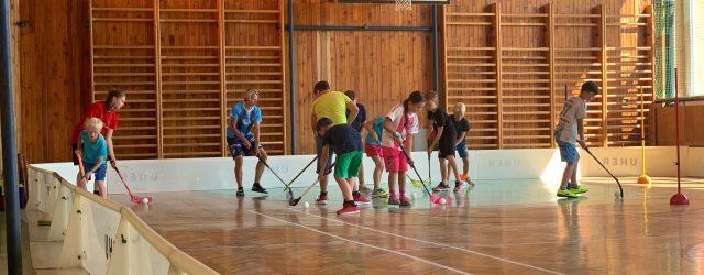Od pondělí 27.července do čtvrtka 30. července 2020 probíhá ve škole florbalový kemp pořádaný českolipským florbalovým klubem FBC. Zaměření kempu: • Florbalový trénink (herní činnosti jednotlivce, týmová spolupráce)• Turnaj• Fyzická […]